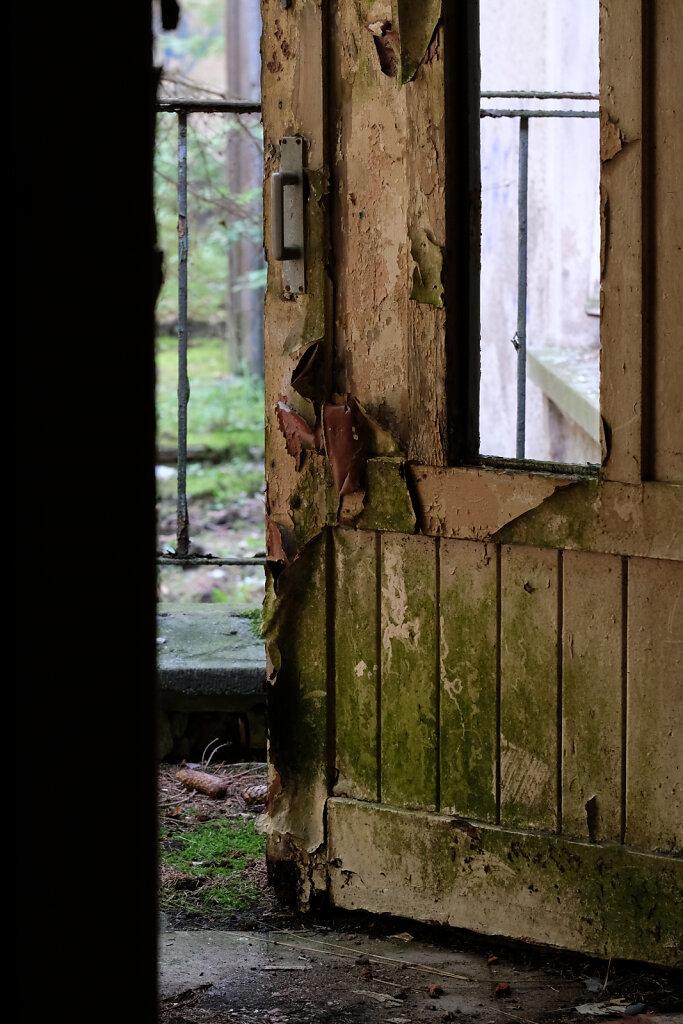 Vogelsang doors II