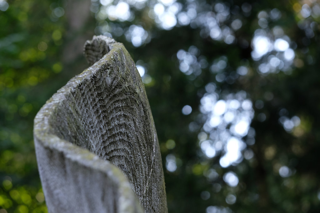Weltwald sculpture IV
