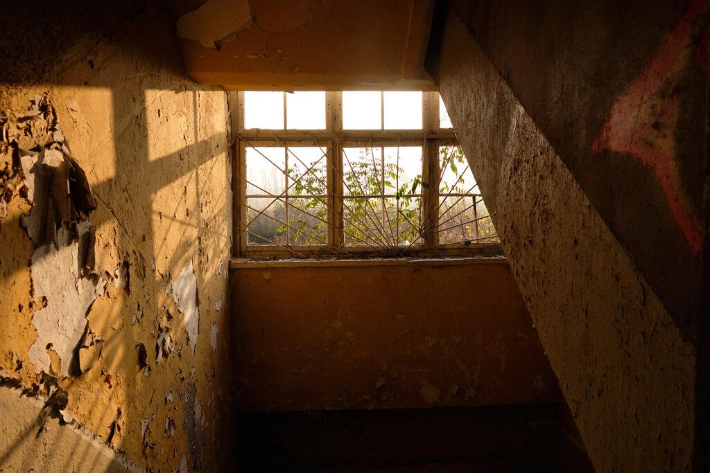 Through the Windows II