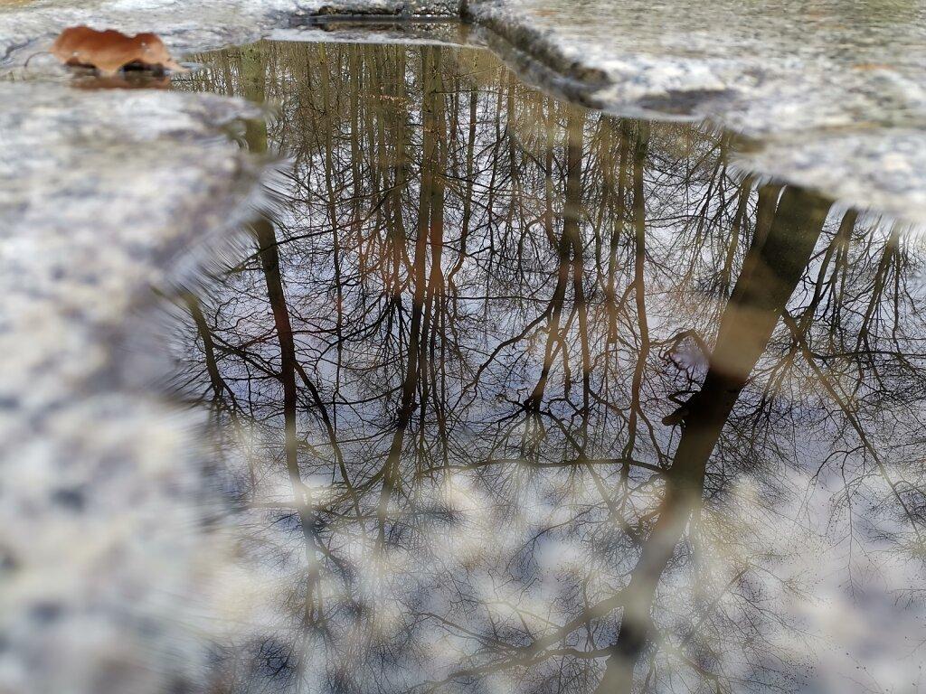 Gedenksteine - Platz für Spiegelung